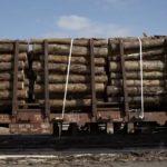 Wagons chargés de bois scolytés à Lumes (08) ; SNCF Réseau